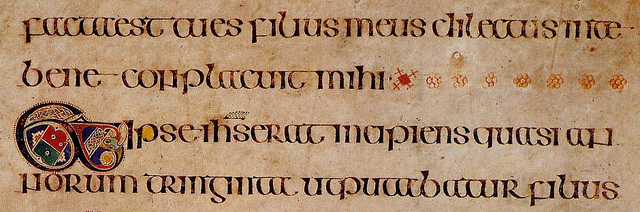 Photo of script from the Book of Kells
