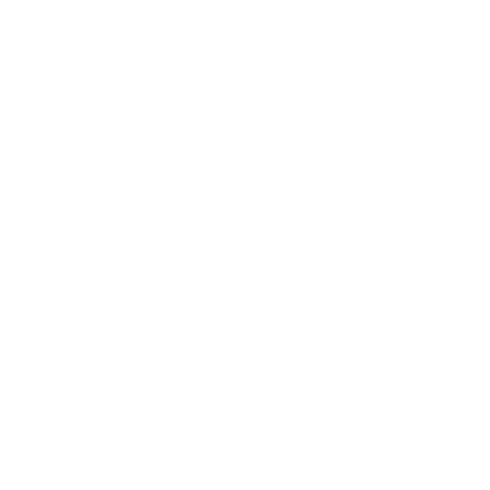 Search icon focussed on a person | User Research | Annertech Services